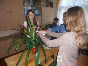 Дев'ятикласниці доглядають квіти