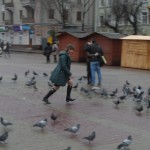Чогось голуби втікають