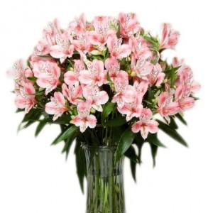 Даруємо квіти!