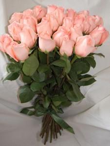 Трояндова ніжність