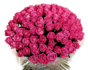 Трояндове диво дарую я Вам