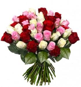 Трояндове розмаїття