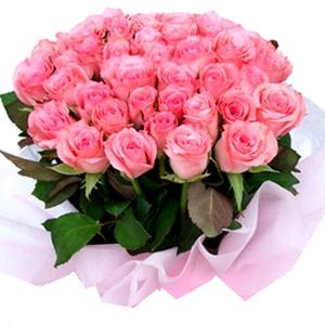 Трояндове диво